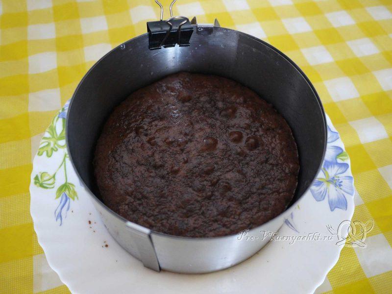 Творожный торт с желатином и малиной - помещаем бисквит в форму