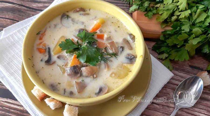 Сырный суп с шампиньонами - подача
